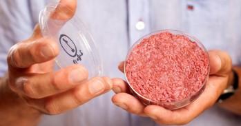네덜란드 기업 '모사 미트'가 만든 인공 소고기. - 모사 미트 제공